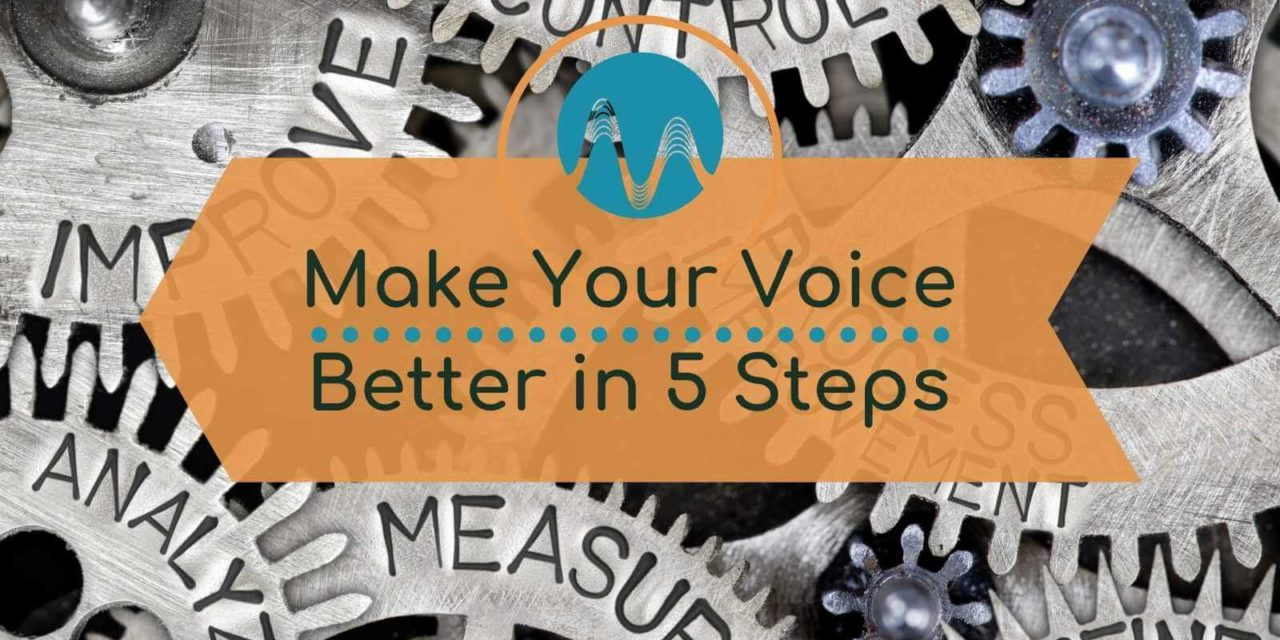 How To Make Your Voice Sound Better – Fixing Bad Audio
