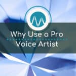 Why Use Professional Voice Over Artist